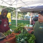 Tierra Del Sol Farmers Market Brings Together  Diverse Community in Bucolic Setting